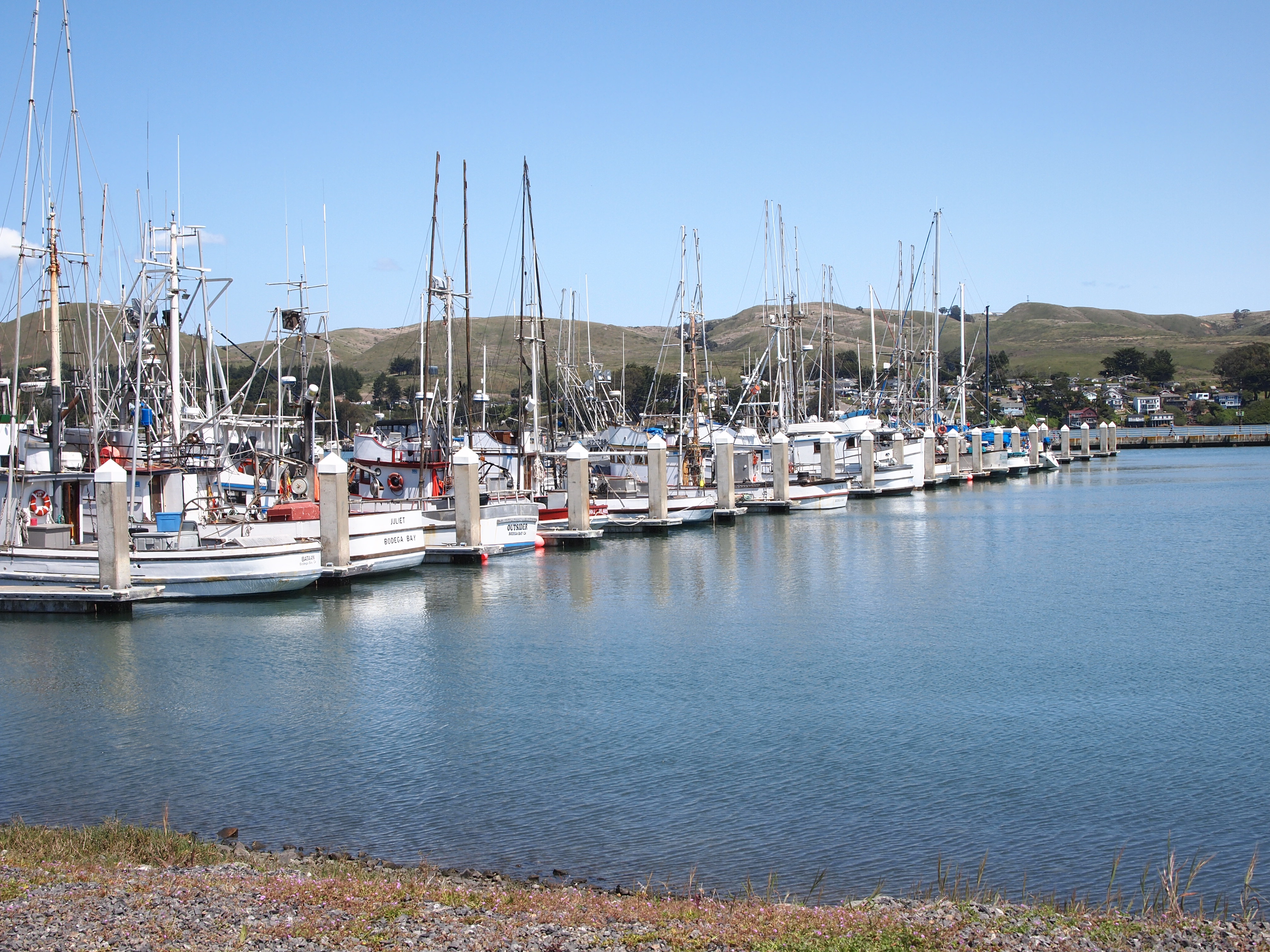 bodega bay Located at portuguese beach in sereno del mar, minutes to bodega bay and sonoma wine country 2 br, 2 ba and wall bed, hot tub, wifi, fireplace, sleeps 4-6.
