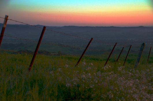 Sonoma Mountain Road at sunset