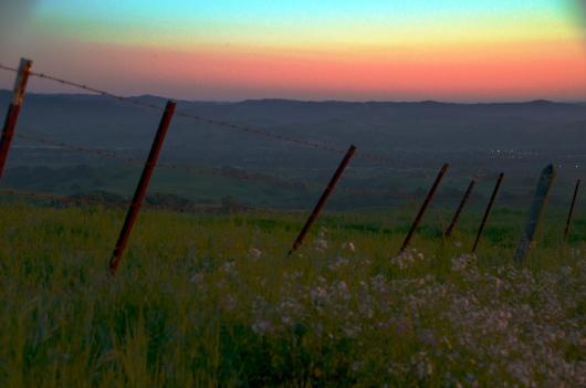 Sonoma Mountain Road at sunset