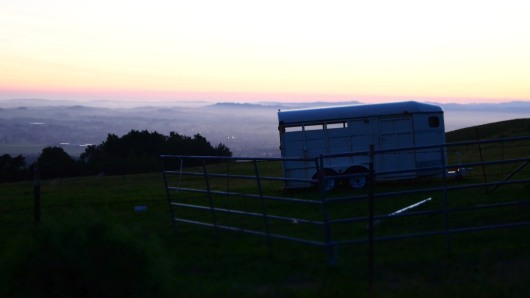 A horse trailer on the side of the road, with a sunset view of the valley down below.